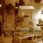 bela festa marrom e rosa provencal