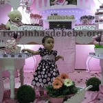 festa marrom e rosa provencal e Giovanninha