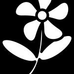 Contorno de flor para pintar