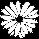 Flor grande para pintar