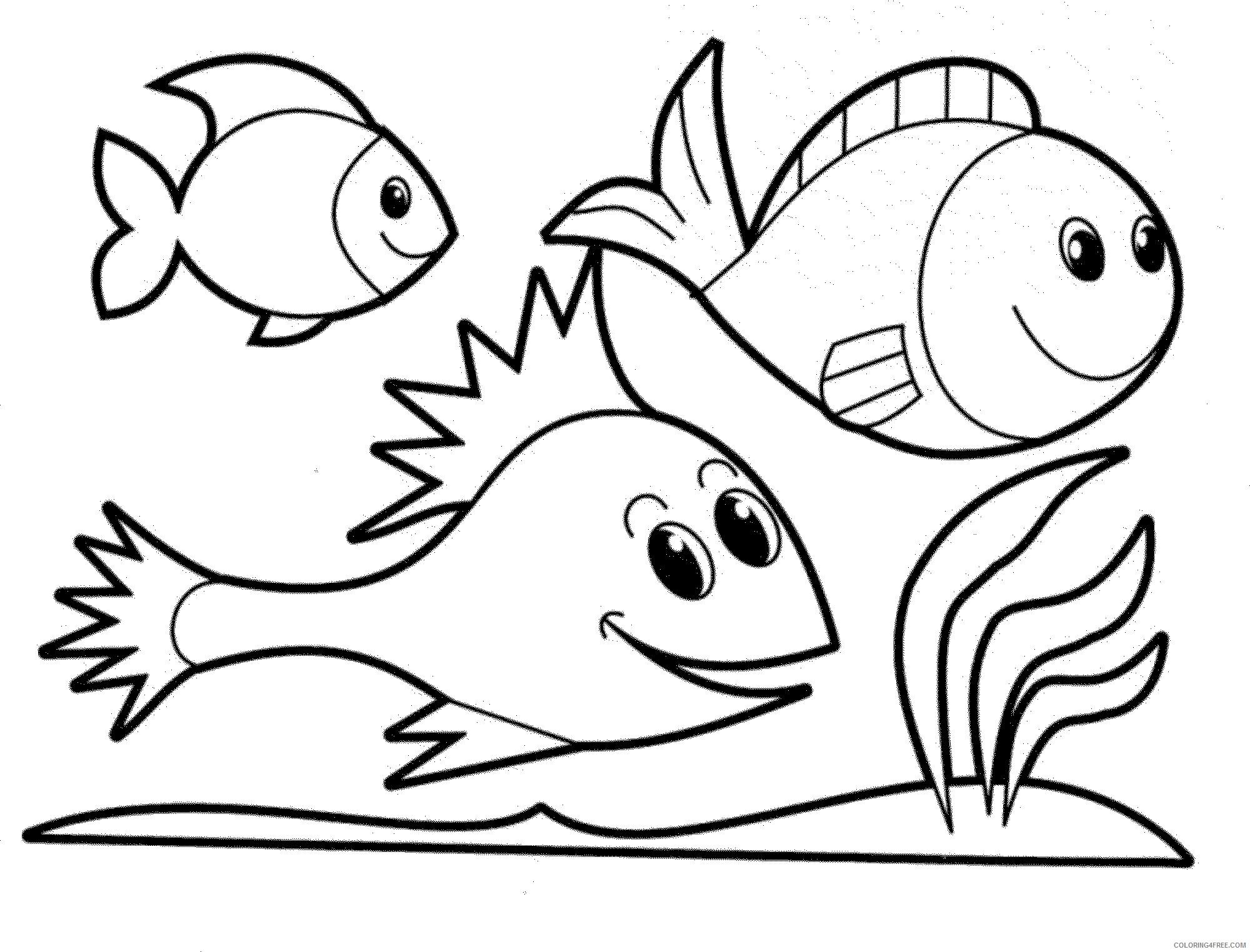 Amigos peixinhos
