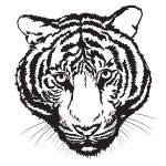 Caricatura de tigre