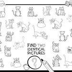 Encontre pares de gatos idênticos