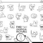 Encontre os pares de gatos iguais