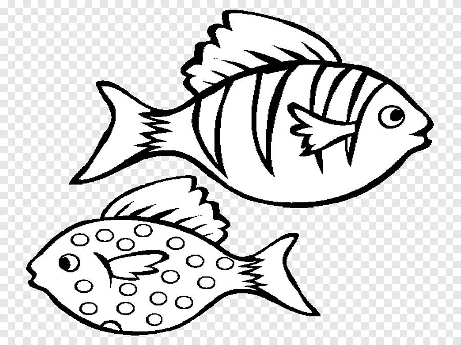 Lindos peixinhos para colorir