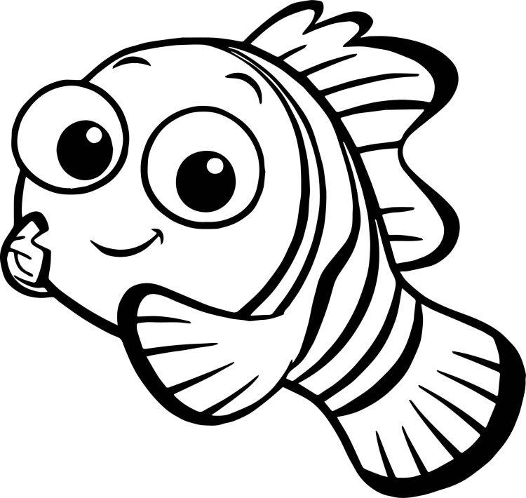 Nemo para pintar e colorir