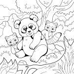 Panda-com-seus-filhotes