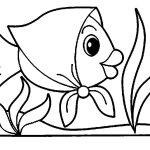 Peixinho Chapeuzinho