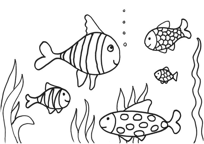 Peixinhos no fundo do mar