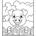 Porco na cerca