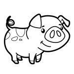 Porco-simpático