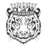 Rei Tigre