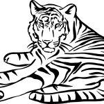 Tigre-deitado-para-pintar