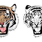 Tigre feroz para colorir