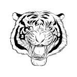 Tigre-feroz-para-pintar