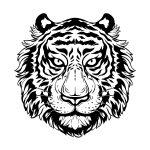 Tigre grande para colorir