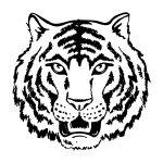 Tigre-para-imprimir-e-colorir