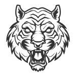 Tigre-selvagem